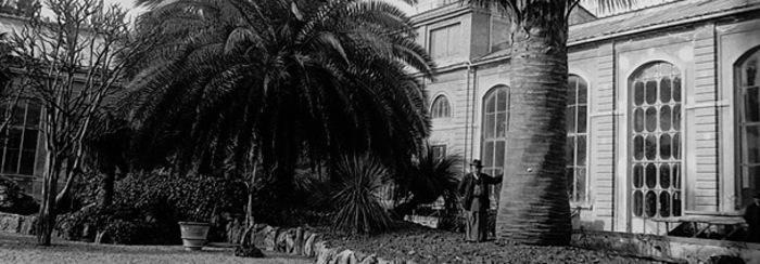 Giardino Dei Semplici Compie 470 Anni Toscana