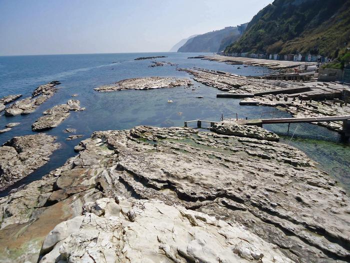 Bagni vietati al Passetto, alga tossica