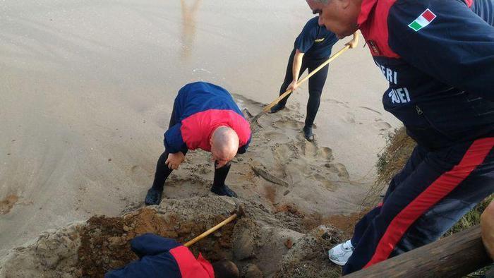 Cranio umano sulla spiaggia di Nora