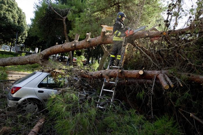 Incidenti stradali: auto contro albero, un morto