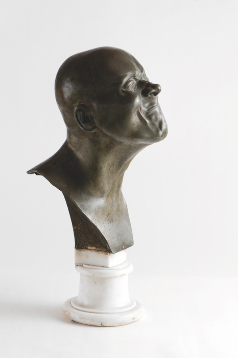 Musei: a Gorizia mostra permanente su Messerschmidt