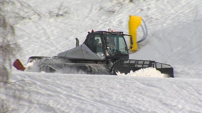 Sbaglia e porta gatto nevi ad Amburgo