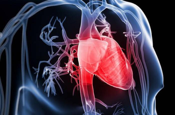 Cardiologia:tecnologia sarà cura futuro