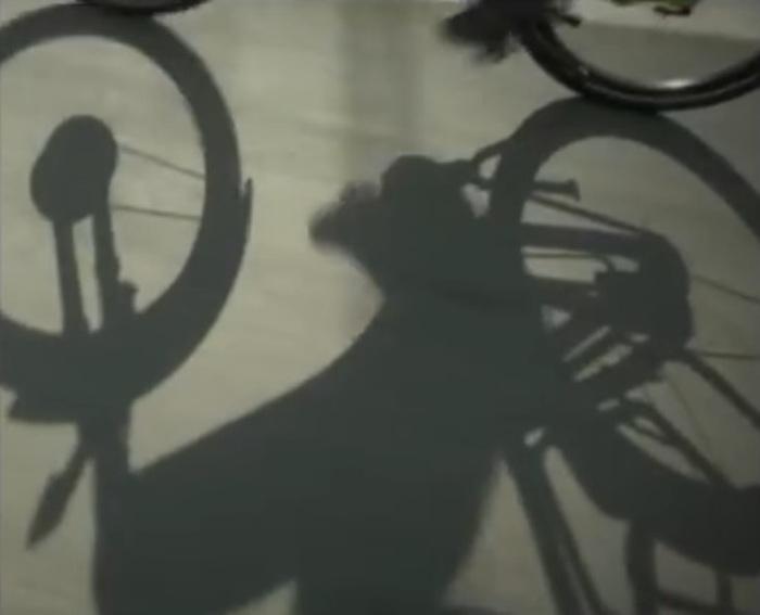 In bici travolto pirata strada a Sesto