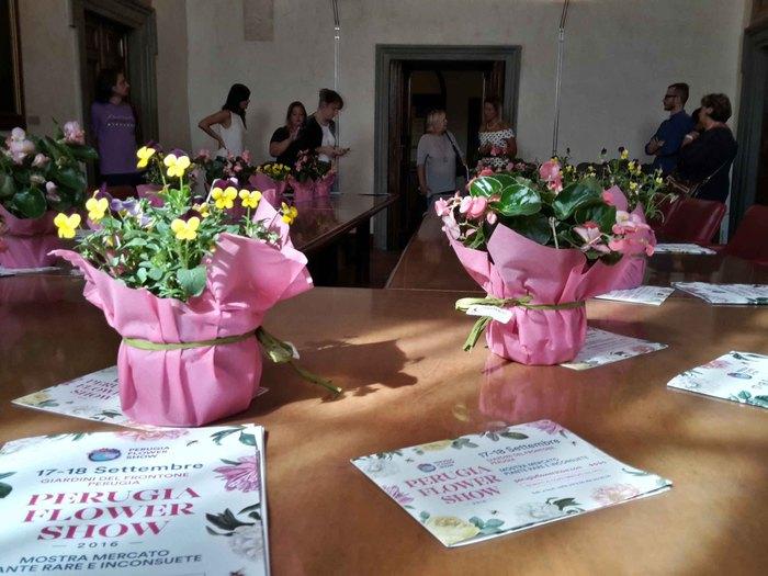 Ecco winter edition Perugia flower show