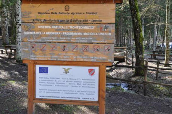 A Montedimezzo 'Forestamica' con Cfs
