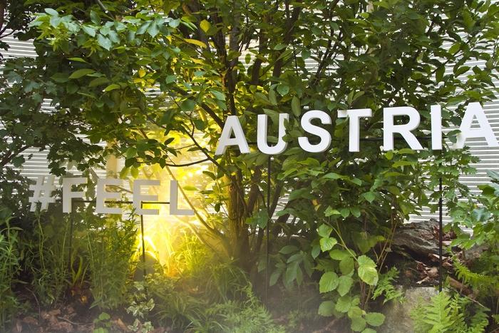 A Roma il bosco culturale dell'Austria