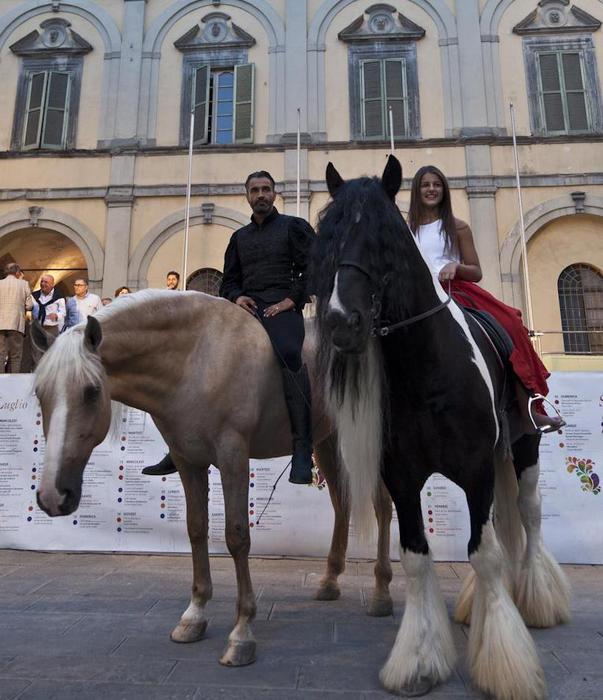 Comincia Mostra cavallo a C. di Castello