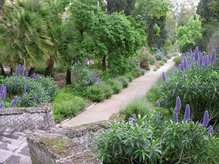 Giardini Hanbury Festeggiano I 150 Anni Liguria