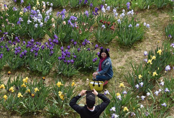 39 sboccia 39 giardino dell 39 iris a firenze toscana - Giardino dell iris firenze ...
