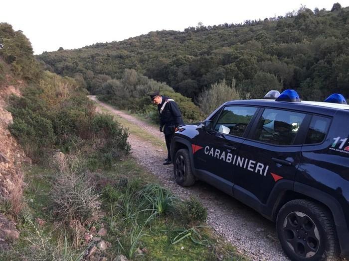 Nuovo incidente di caccia in Sardegna