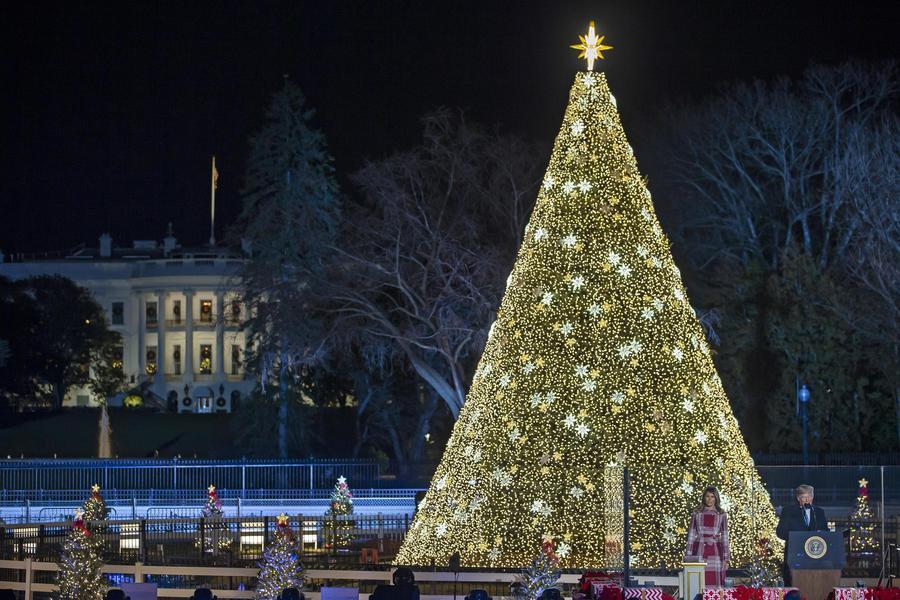 Albero Di Natale Washington.L Albero Di Natale Di Washington Con Donald Trump E Melania Curiosita Ansa It