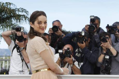65th Cannes Film Festival - De Rouille et d'Os Photocall