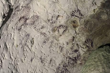 Scoperte nel Borneo le più antiche pitture figurative: una rappresenterebbe un toro