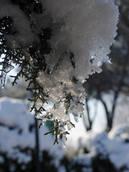 Maltempo:ancora neve e gelo al Nord