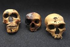 Researchers find evidence of early man in caves near Naples