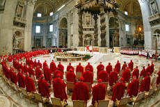 70 cardinals present for pope's last general audience