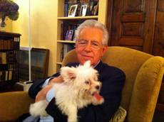 Monti introduces new dog Empatia on Twitter