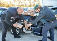 37 kg droga sequestrati in porto Ancona