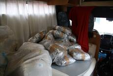 Droga: sequestrati 500 kg di marijuana