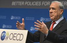 OECD praises Italy's labor-market, social-security reforms