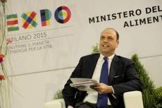 Govt doesn't need Berlusconi's support for reforms - Alfano