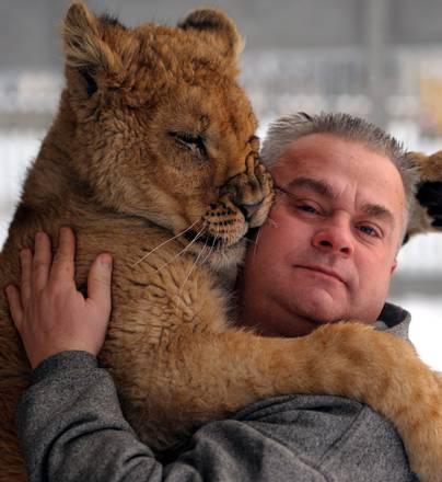 Polonia, Simba puo' vivere con il suo padrone. Concessa l'eccezione alla regola