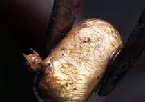 Una pepita d'oro