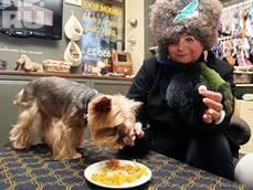 Mosca, primo ristorante per cani e gatti