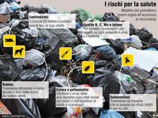 GRAFICO: I rischi dalla spazzatura