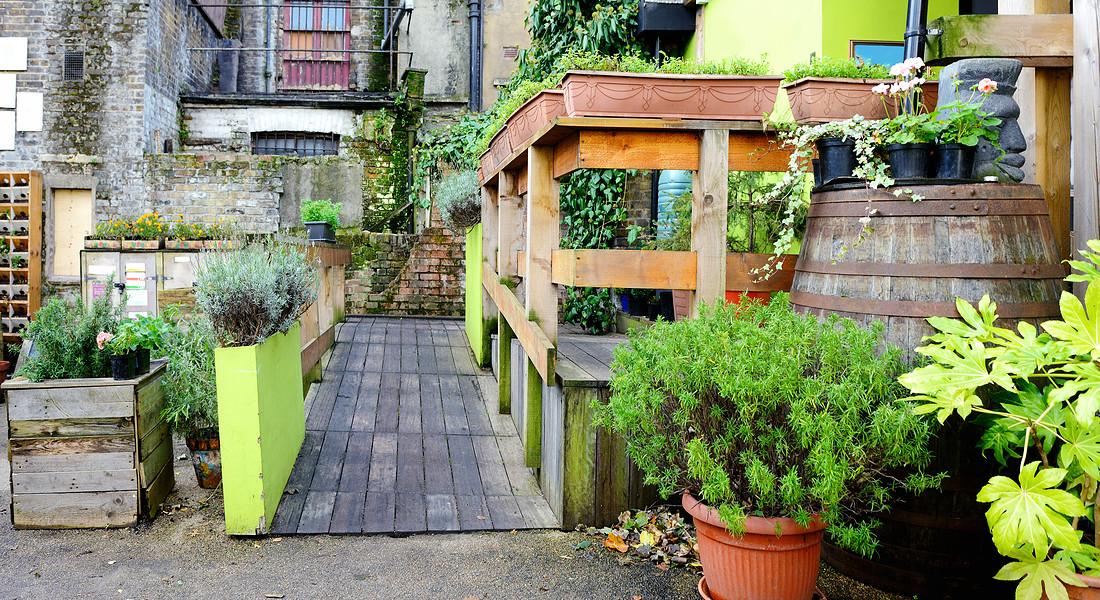 Un orto condominiale. Nell'immagine, uno nel centro di Londra. ph- Boogich iStock. © Ansa