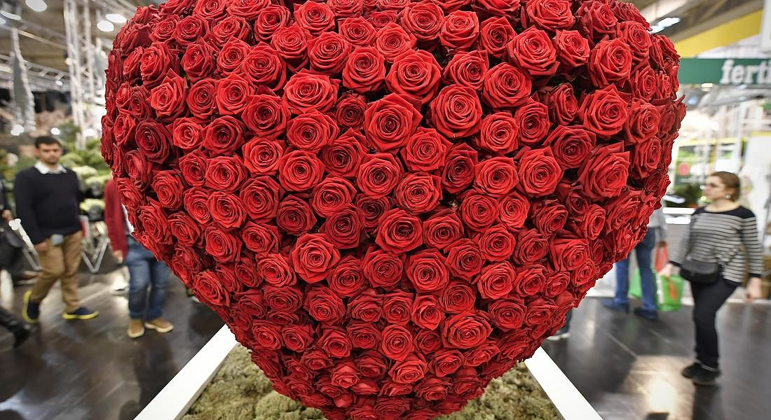 A big heart made of red roses is on display at the flower show in Essen, Germany, Thursday, Jan. 25, 2018. (ANSA/AP Photo/Martin Meissner) © AP