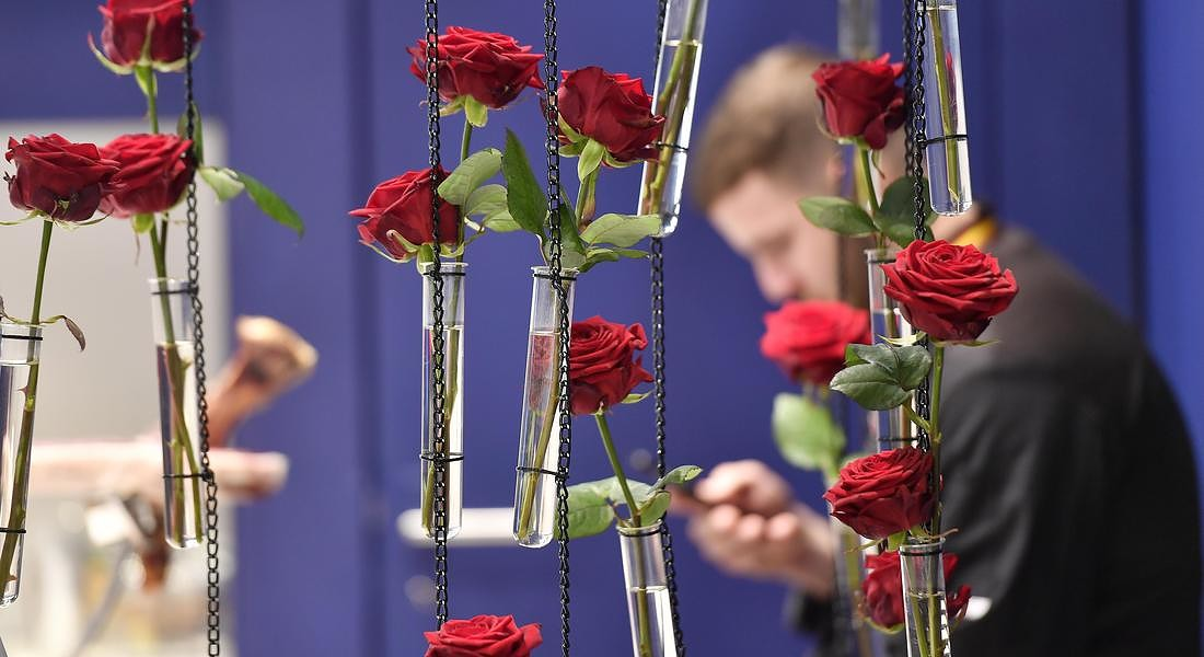 Germany Flower Show © AP