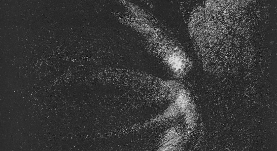 Harder Profilo di soldato seduto Charles Harder, Soldato seduto di profilo, 1914-1915,  litografia © ANSA