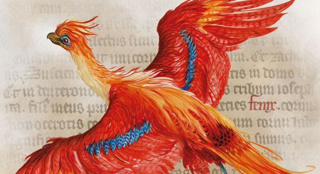 Vent'anni Harry Potter, tutta la magia di Hogwarts in mostra a New York © ANSA