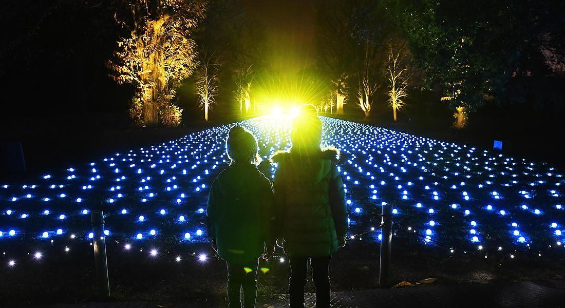 A Kew Gardens a Londra una cattedrale di luci natalizie © EPA