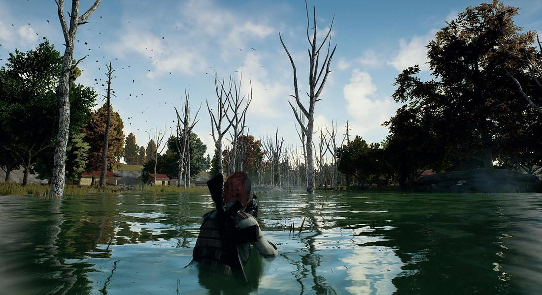 PlayerUnknown's Battlegrounds -Swamp © ANSA