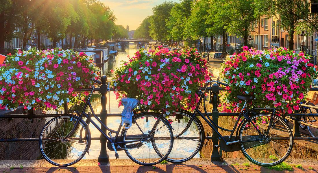 Un ponte fiorito di gerani ad Amsterdam. foto dennisvdw iStock. © Ansa