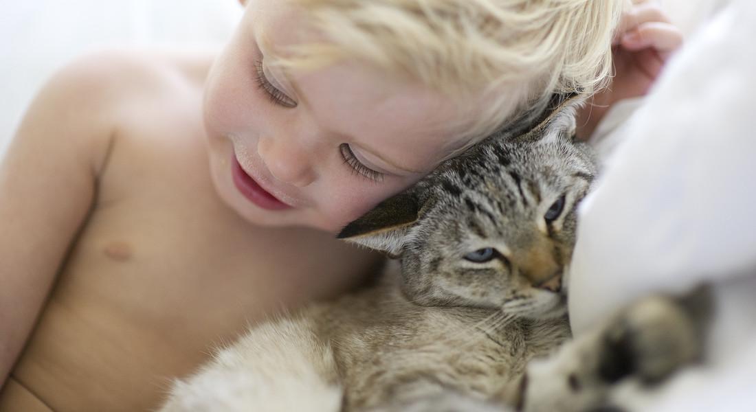Un bambino abbracciato al suo gatto foto iStock. © Ansa