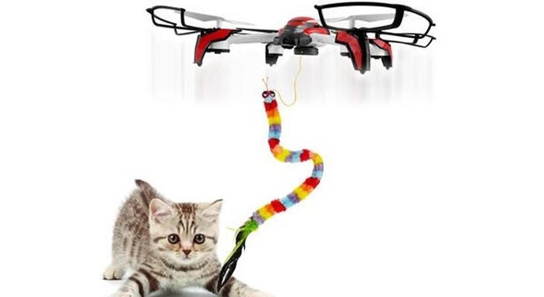 drone per far giocare i gatti in casa © ANSA