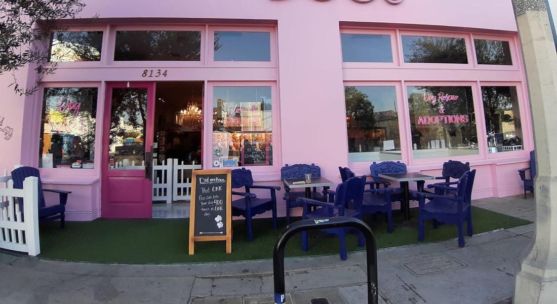 Un dog cafè a Los Angeles © ANSA