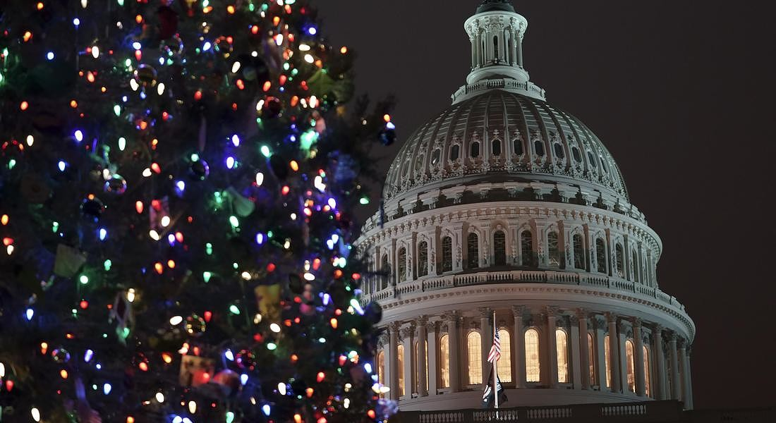 Albero di Natale a Washington © AP