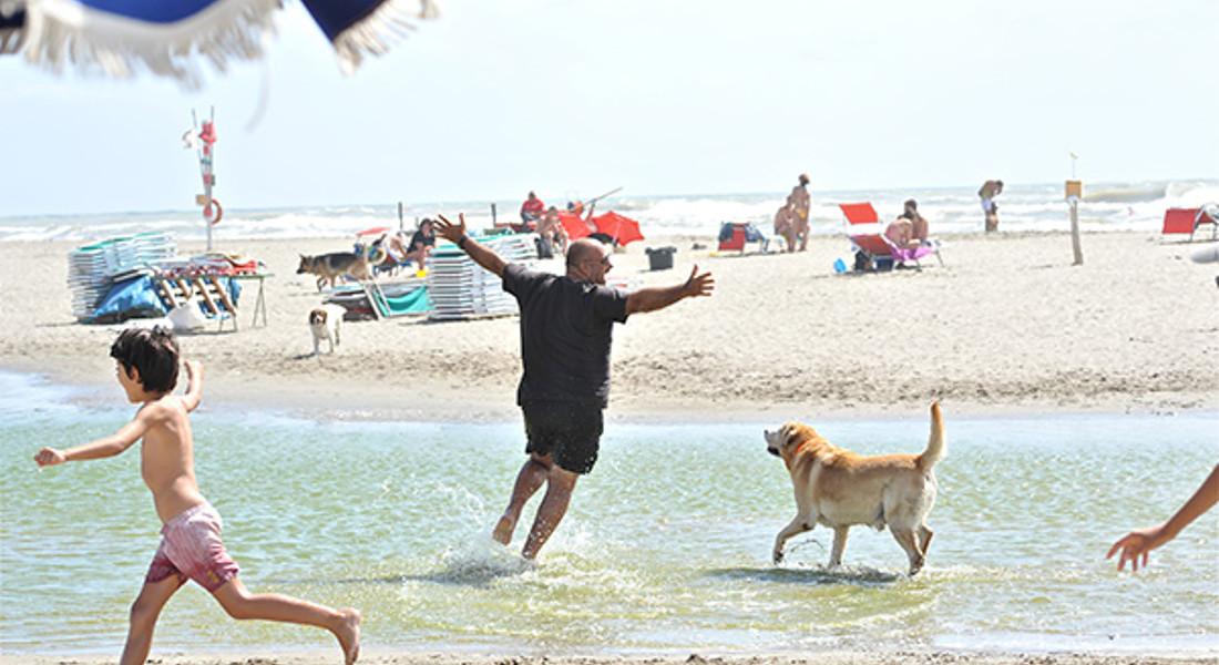 @Baubeach , a Maccarese (Roma) lido ecofriendly per i pets © Ansa