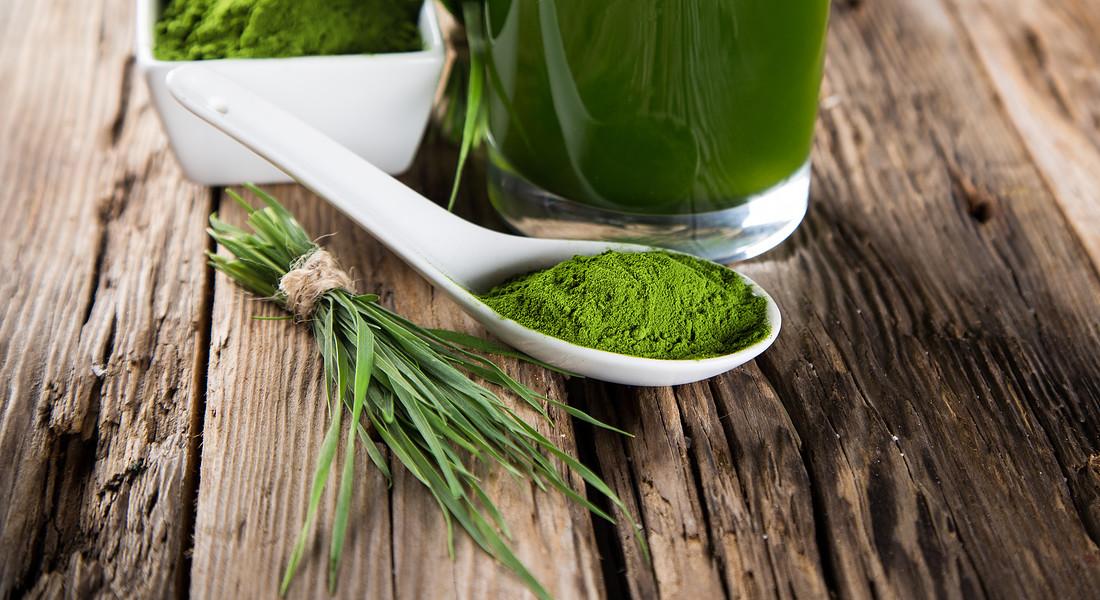 Wheatgrass juice, succo detox foto iStock. © Ansa