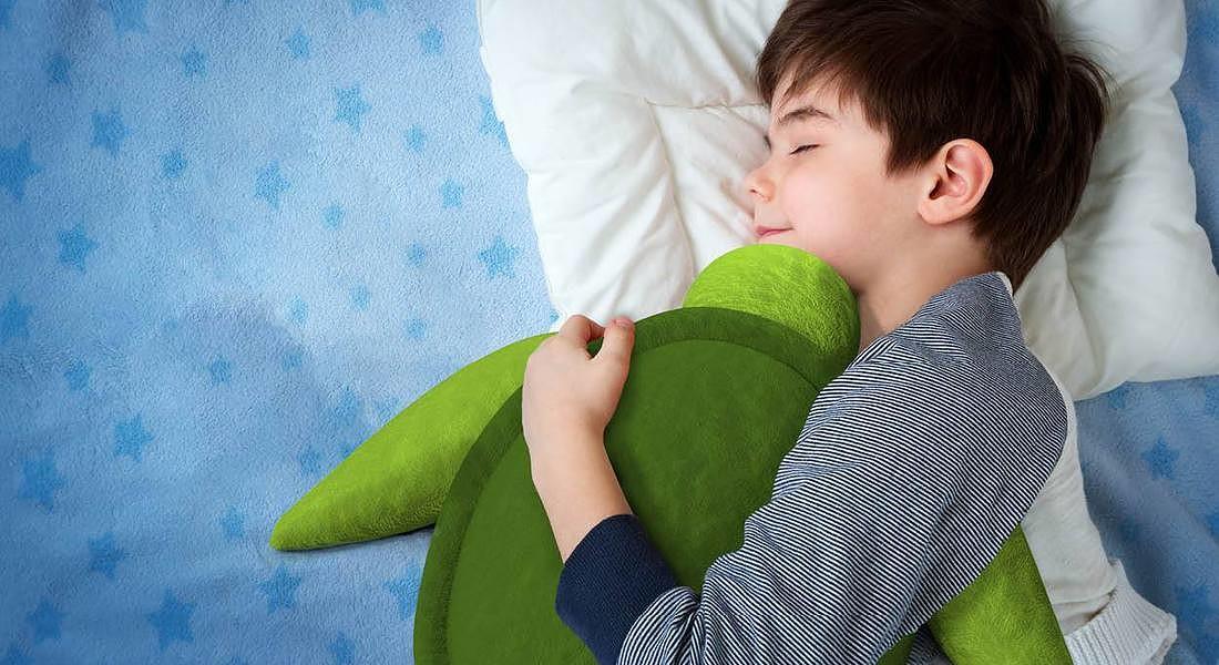La tartaruga si gonfia e respira adattandosi al battito cardiaco, Heartle - Design for autism , FuoriSalone © Ansa