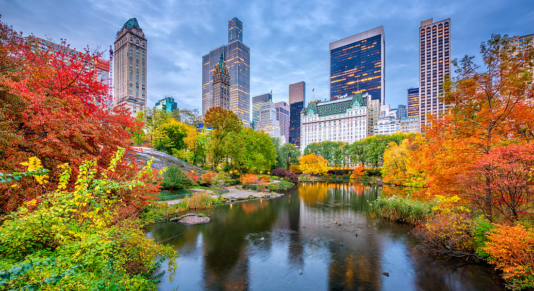 i grattacieli di Central Park South a New  York foto iStock. © Ansa