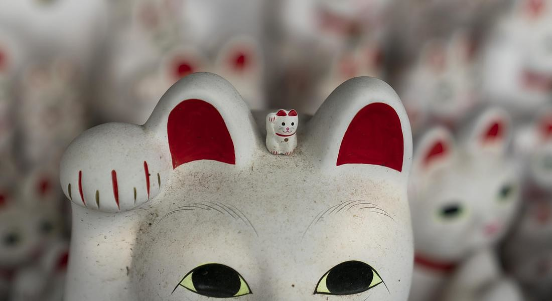 Japan Lucky Cat Temple Photo Gallery © AP