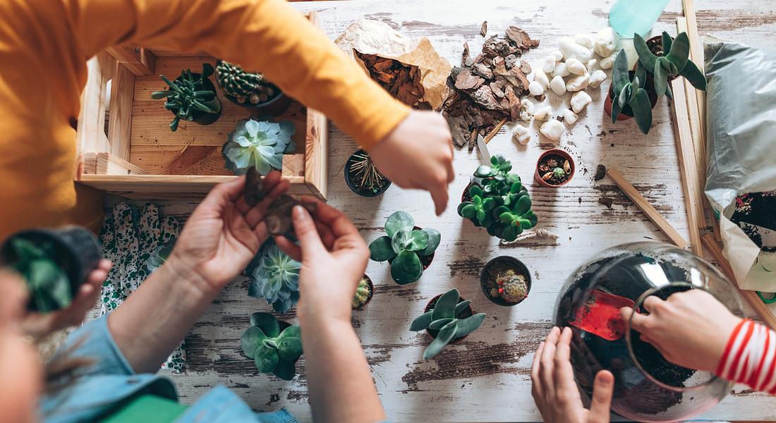 Realizzare un terrarium può essere un divertente laboratorio da fare con i figli in famiglia foto iStock. © Ansa