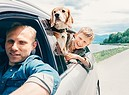 In viaggio con il cane. foto olovyova iStock. (ANSA)