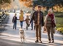 Una coppia di anziani al parco con il cane foto iStock. (ANSA)